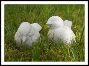 Söta små fåglar
